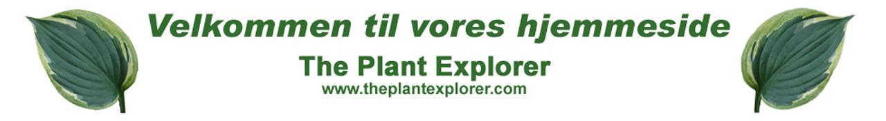 The Plant Explorer