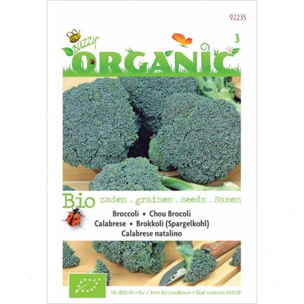 Brassica oleracea var. italica Calabrese - Økologisk frø