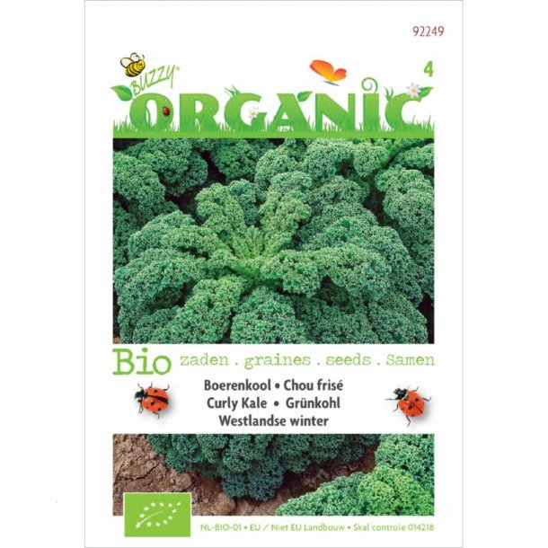 Brassica oleracea convar. acephala Westlandse Winter - Økologisk frø