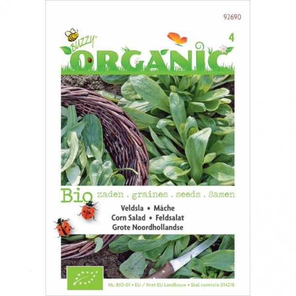 Valeriana locusta L. Grote Noordhollandse - Økologiske
