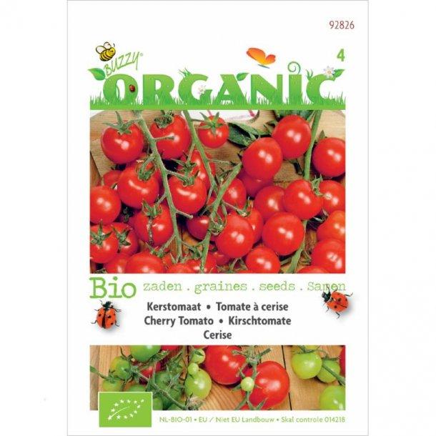 Solanum lycopersicum Cerise - Økologiske