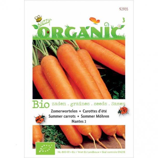 Daucus carota Nantes 2 - Økologiske