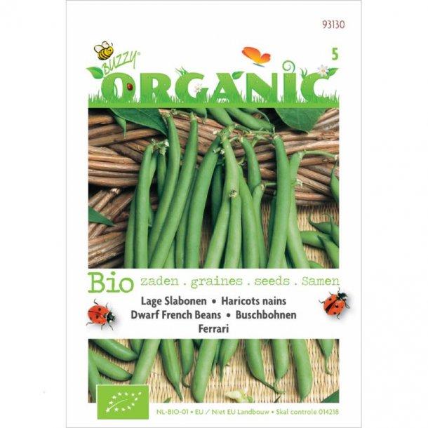 Phaseolus vulgaris Ferrari - Økologiske