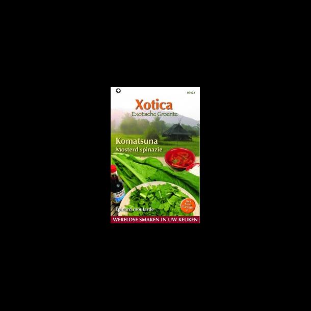 Brassica campestris var. rapa Komatsuna