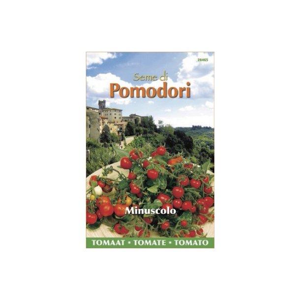 Solanum lycopersicum Minuscolo-Micro Tom F1