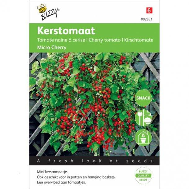 Solanum lycopersicum Micro Cherry