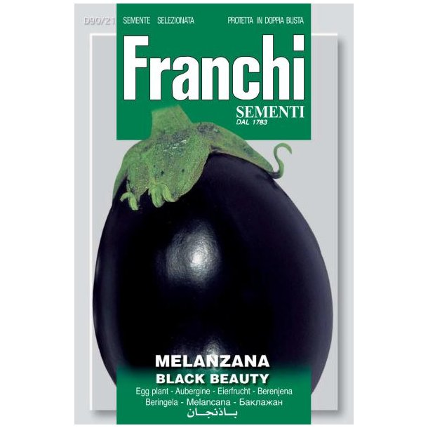 Solanum melongena Black Beauty