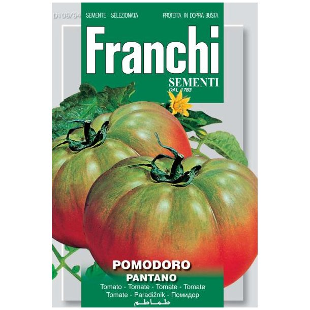 Solanum lycopersicum Pantano