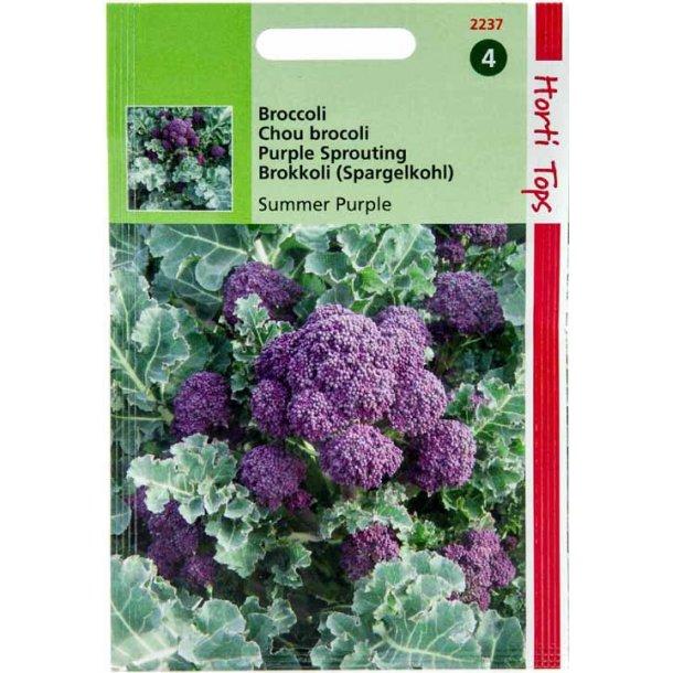 Brassica oleracea var. italic Summer Purple