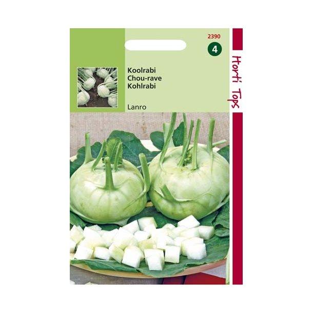 Brassica oleracea var. gongylodes Lanro