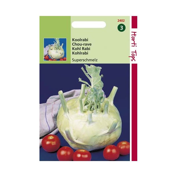 Brassica oleracea var. gongylodes Giant White - Superschmelz