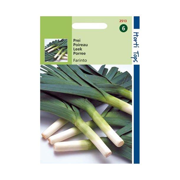 Allium porrum Farinto