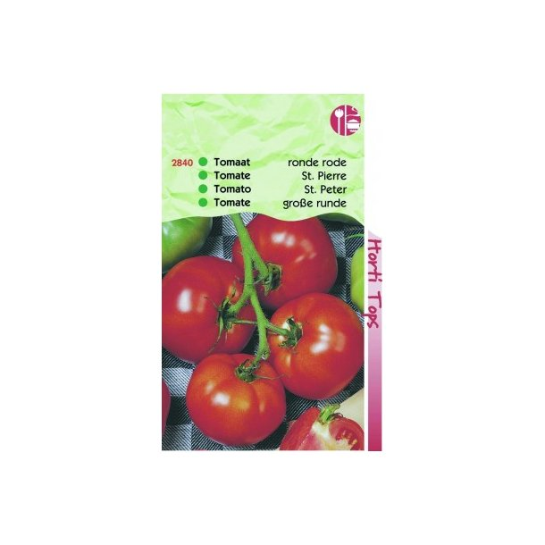 Solanum lycopersicum St. Pierre
