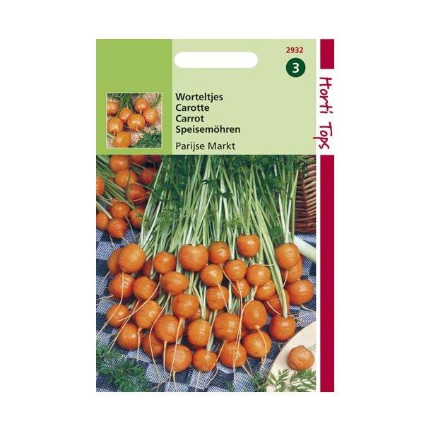 Daucus carota ssp. sativus Paris Market 4