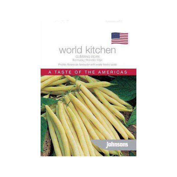 Phaseolus vulgaris Kentucky Wonder Wax