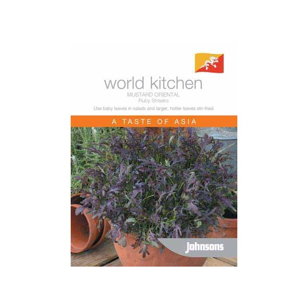 Brassica juncea Oriental Ruby Streaks