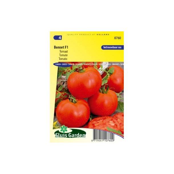 Solanum lycopersicum Boset